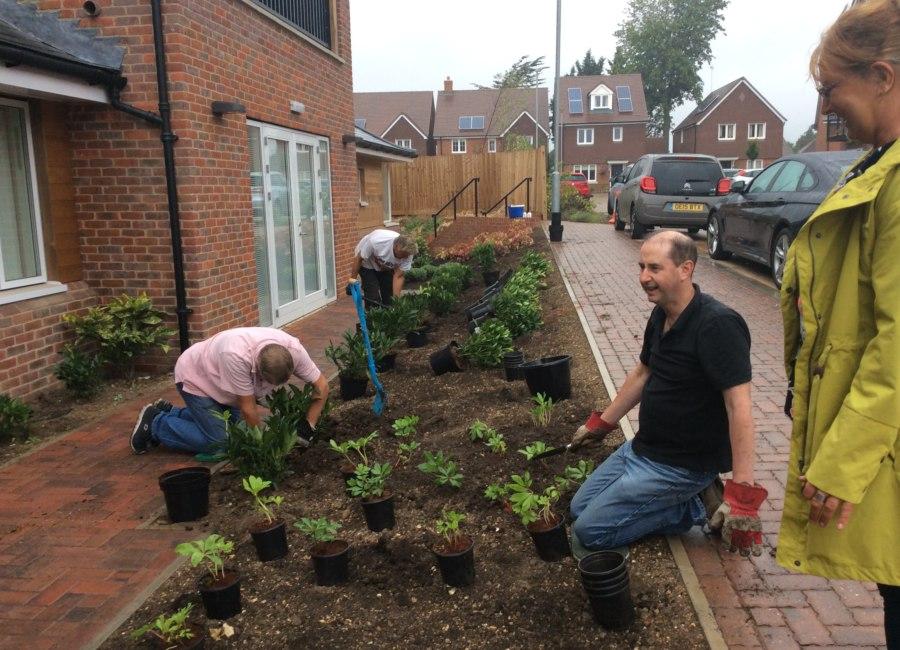 Garden being planted.